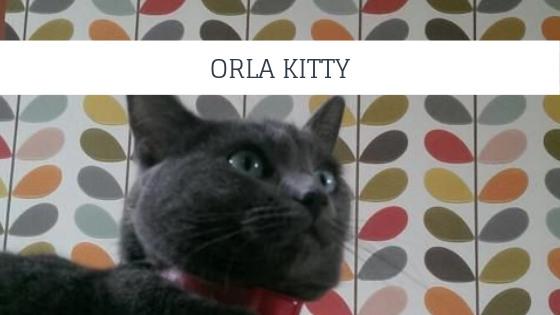 Orla Kitty