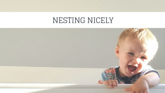 Nesting Nicely | Pulling Together The Perfect Nursery