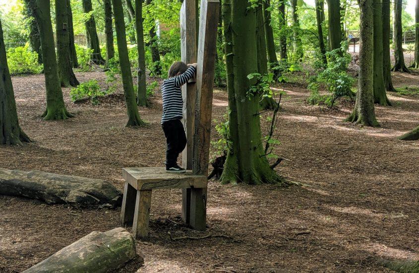Reasons to visit Hardwick Park in Sedgefield